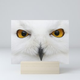 Evil eyes of the snow Mini Art Print