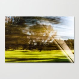 The Speed of Nature Canvas Print