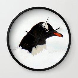 Gentoo Penguin Head Wall Clock