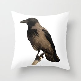 Hooded Crow Isolated Throw Pillow