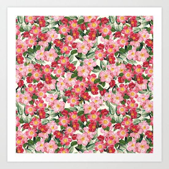Wild Roses - Seamless Pattern Art Print