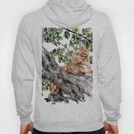 The Orange Cat Hoody