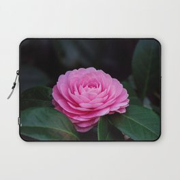 Pink Perfection Camellia Japonica is Blooming Laptop Sleeve
