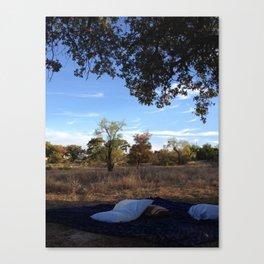 nature naps Canvas Print