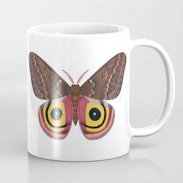 io moth (Automeris io) female specimen 2 Coffee Mug