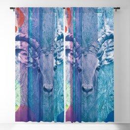 Ibex Blackout Curtain