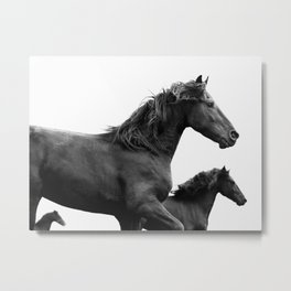 Wild at Heart - Black and White Horses, Nature Photography Metal Print