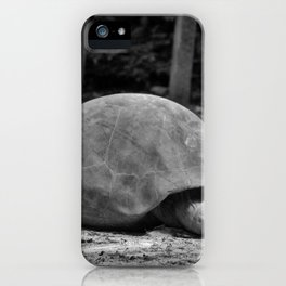 Tortoise Relaxing iPhone Case
