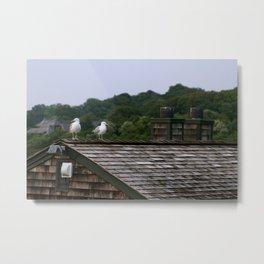 Seagull Date I Metal Print