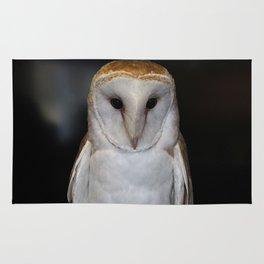 Luther- Common Barn Owl VI Rug