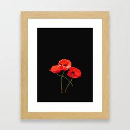 3 Poppies on Black Framed Art Print