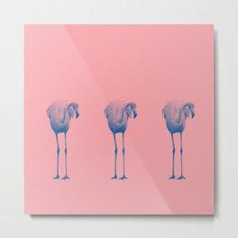 Flamingo Trio (blue) Metal Print