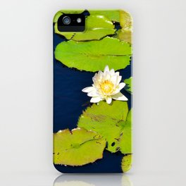 Dark Blue Pond by Teresa Thompson iPhone Case