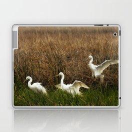 Egret Landing Laptop & iPad Skin