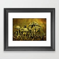 Fungus World Framed Art Print