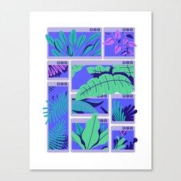 C:\WINDOWS\TROPICAL Canvas Print