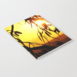 Kookaburra Silhouette Solstice Sunset Notebook