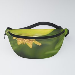 Young and green Pomegranate Fanny Pack