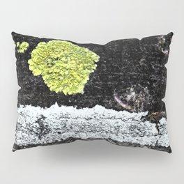 Lichens on a Tree Bark Pillow Sham