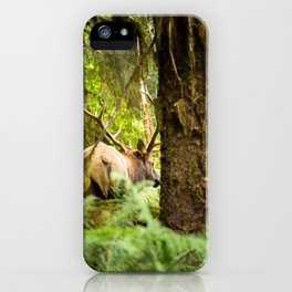 Elk of the forest iPhone Case