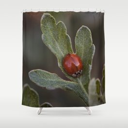 The Lady Beetle With No Spots Shower Curtain