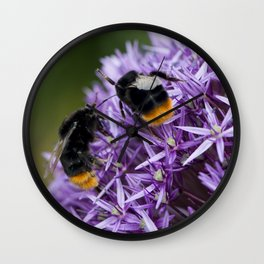 Fighting Bumble Bees Wall Clock