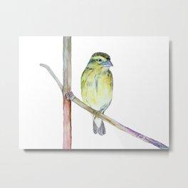 One Legged Bird Metal Print