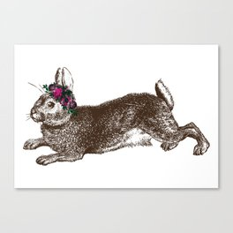 The Rabbit and Roses Canvas Print