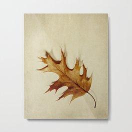 just a leaf Metal Print