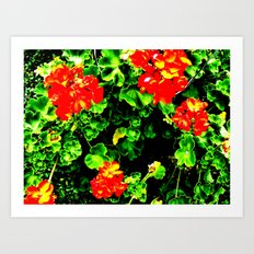 Red Flowers (Edited)  Art Print