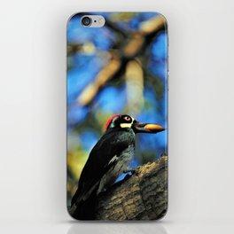 Gotcha! Autumn Woodpecker iPhone Skin