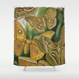 Moths & Caterpillars Shower Curtain
