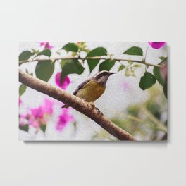 Bird - Photography Paper Effect 008 Metal Print