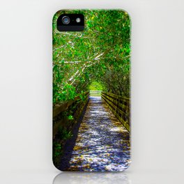 Path under the Tree Canopy iPhone Case
