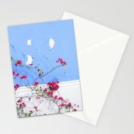 Nicaraguan Delight Stationery Cards