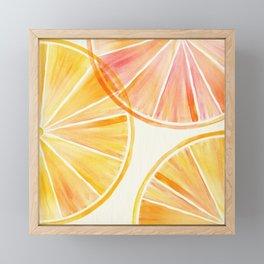 Sunny Citrus Framed Mini Art Print
