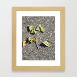 Brotherhood Of Leaves Framed Art Print