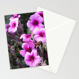 Beauty on The Rock Stationery Cards