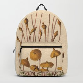 1800s Moss Lithograph Splachnum Luteum Backpack