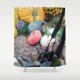 Freshly picked assortment of fall pumpkins, gourds, Autumn Decorations Shower Curtain