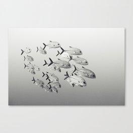 160419-3158 Canvas Print