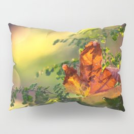 Graceful Pillow Sham