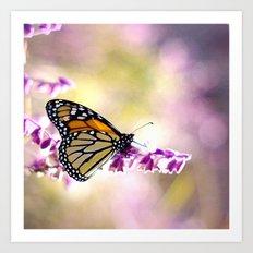 Monarch Softness Art Print