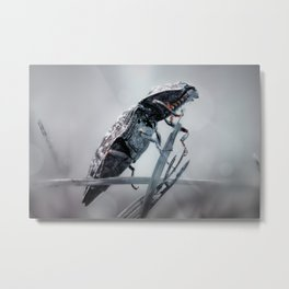 The bug Metal Print