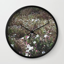 Spring in the Mojave Desert Grasslands Wall Clock