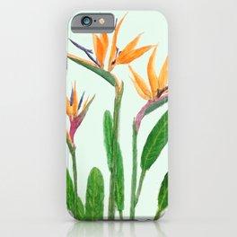 bird of paradise flower painting iPhone Case