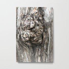 Tree trunk's knot Metal Print