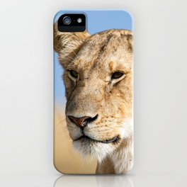 Lioness against blue sky iPhone Case