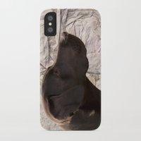 labrador iPhone & iPod Cases featuring black Labrador by Doug McRae