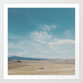 Overberg farmlands, South Africa Art Print